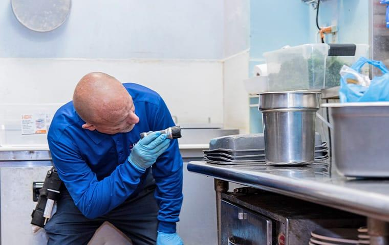 a lindsey technician inspecting for pests in a palatka florida commercial kitchen