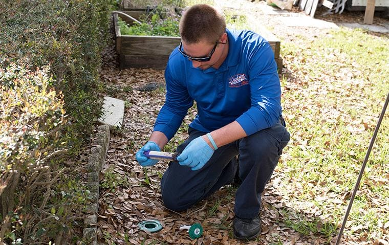 lindsey pest technician inspecting a termite trap in jacksonville beach florida