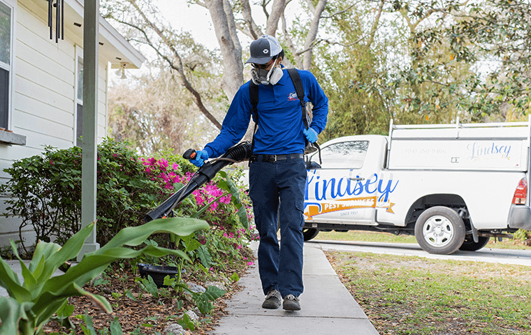 a pest technician treating the shrubs outside of a jacksonville florida home