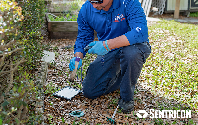 a technician inspecting a termite bait station outside of a jacksonville florida home