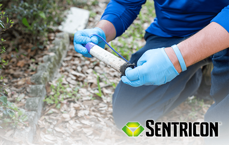 a pest technician inspecting a sentricon bait station