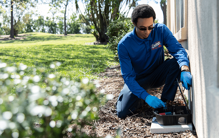 a technician inspecting a rodent trap in jacksonville beach florida