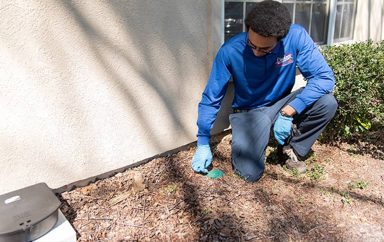 a pest technician inspecting for termites at a yulee florida home