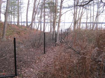 Photo #233, 4' Black Vinyl-Coated Welded Wire with Black Steel Posts