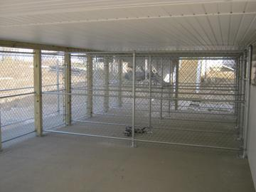 Photo #276, Divided Kennels