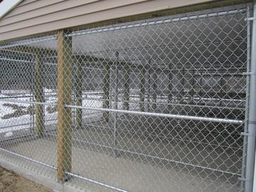 Photo #277, 6' Galvanized Chain Link Dog Kennels