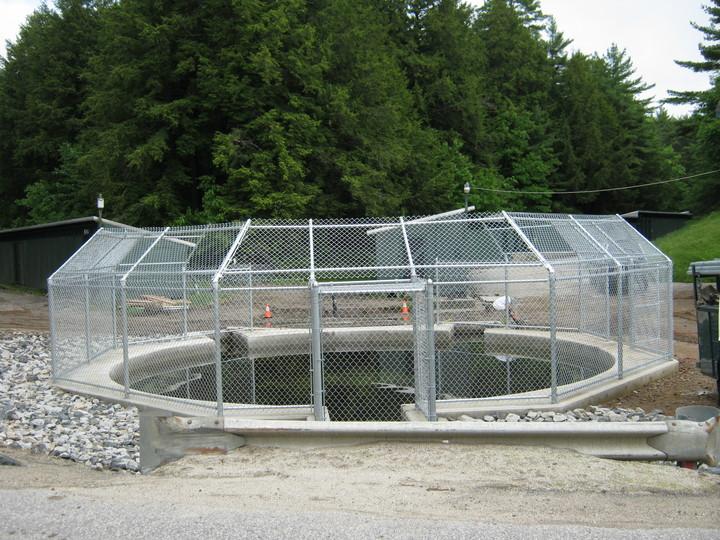 Photo #406, Chain Link Enclosure at Fish Hatchery