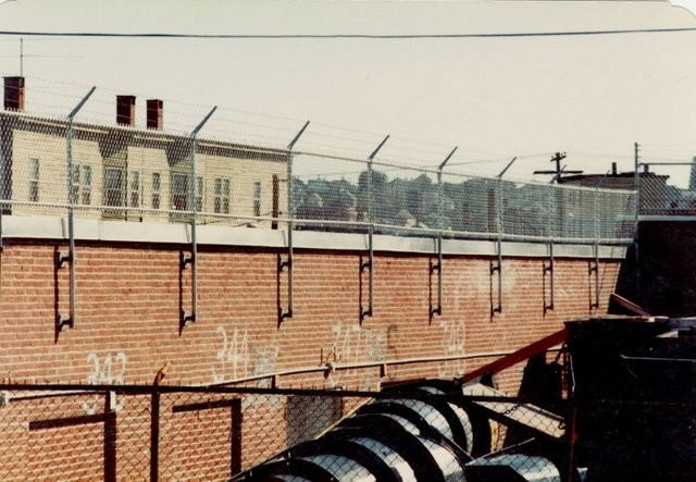 Photo #74, 4' Chain Link Plus 1' Barb Wire