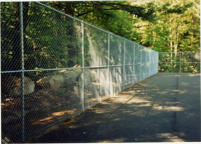 Photo #56, Galvanized Tennis Court Enclosure