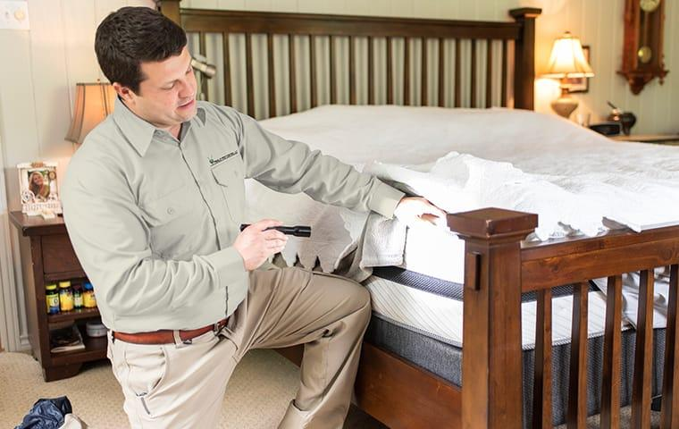 a technician inspecting a bed for bed bugs in indianapolis indiana