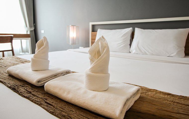 towels folded on a hotel bed