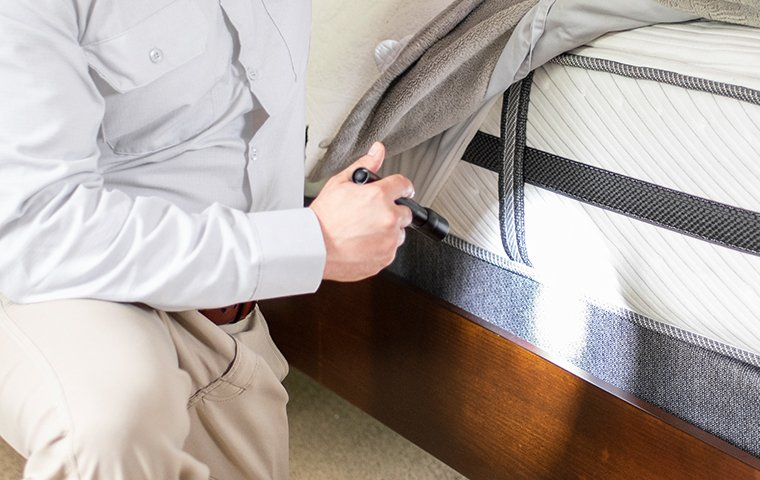 a tech inspecting a mattress