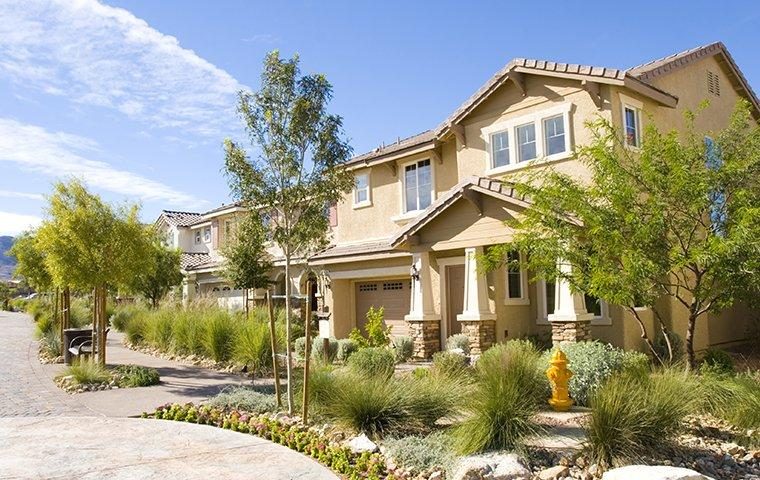 a view looking up the street at beautiful homes in macdonald ranch nevada
