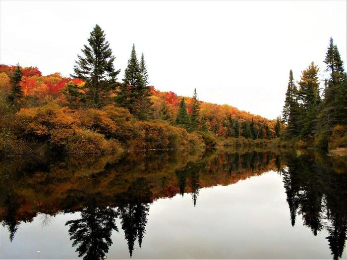 Autumn is spectacular on the Oswegatchie (Credit: Wm Hill- Hiking the trail to yesterday)