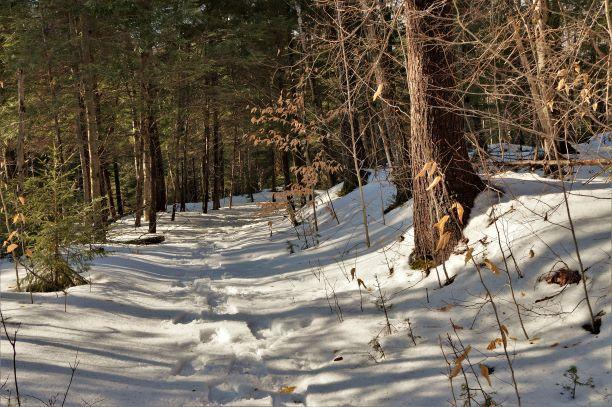 The trail is lightly marked with red tree shaped tags, but is easily followed. (Credit: Wm Hill/Hiking the trail to yesterday)