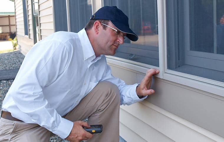 pest control service technician inspecting a widow screen for holes