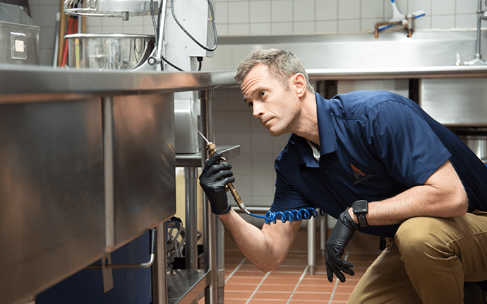 pest treatment in commercial kitchen