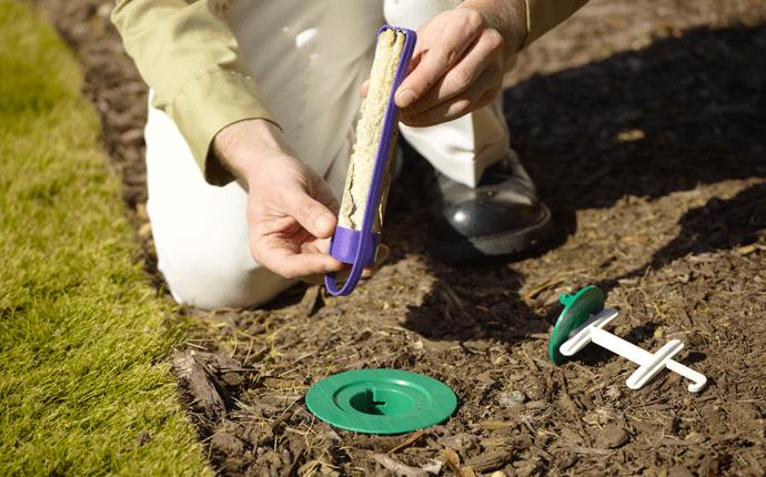 termite expert explaining the sentricon system