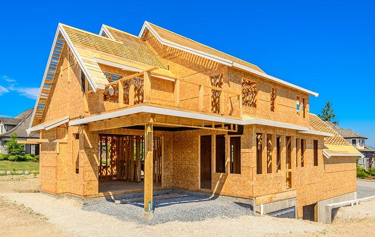 the wooden structure of a home under construction