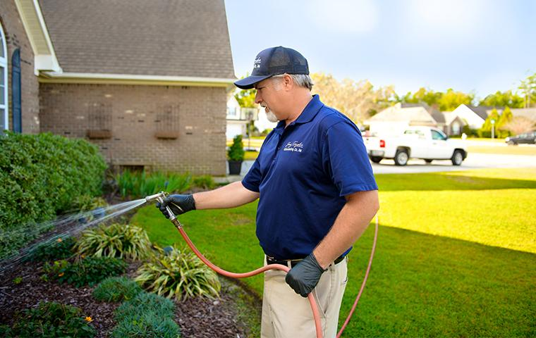 a pest expert treating front yard