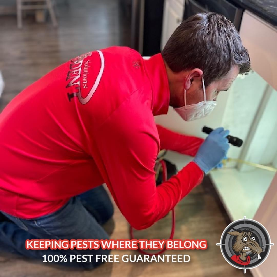 technician inspecting the cabinets in a home for pests
