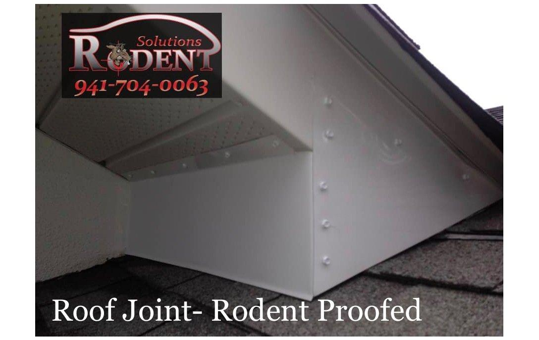 rodent barrier on roof