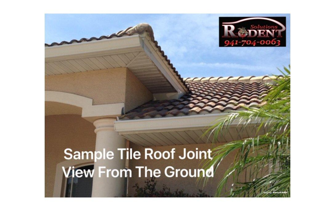 roof joint tile