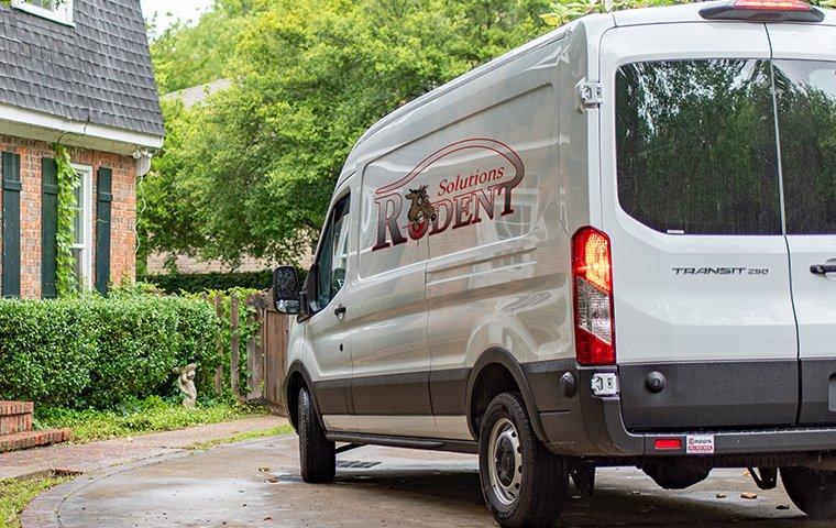 rodent solutions company van