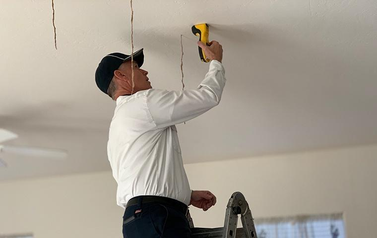 a pest control service technician inspecting for termites in the ceiling of a home