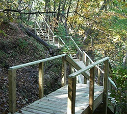Stairs along trail in Stephens Park