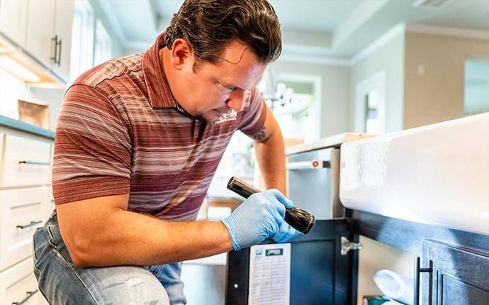 pest control technician inspecting interior