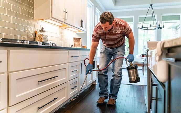 pest control technician treating interior