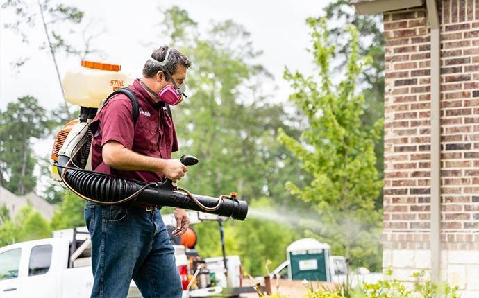 technician using mosquito fogging machine