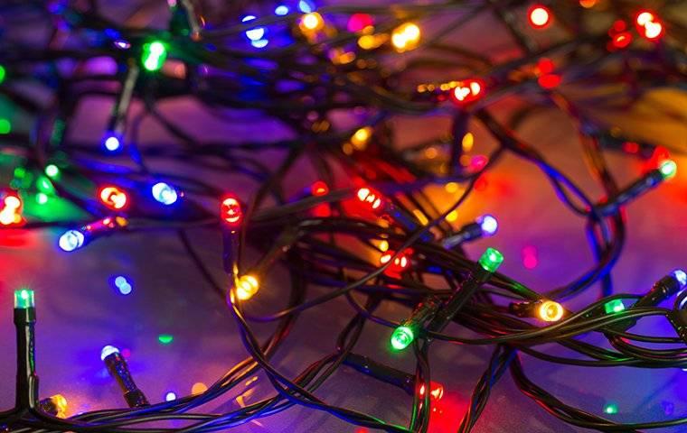led holiday lights