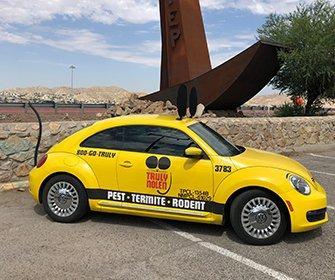 truly nolen yellow mouse car
