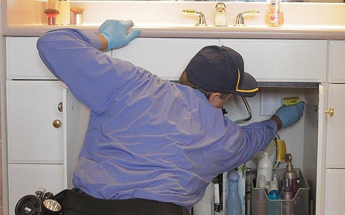 a pest control expert inspecting a kitchen