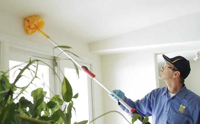 a pest technician removing spider webs in a home