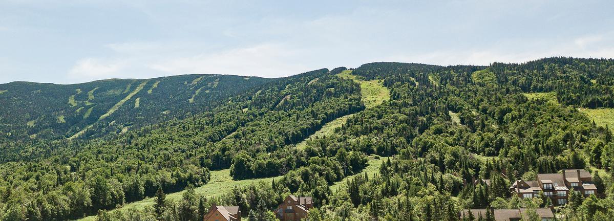 Saddleback mountain in the summer