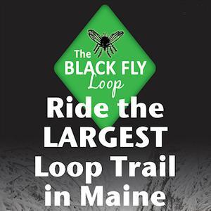 The Black Fly Loop