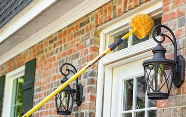 dewebbing service on home