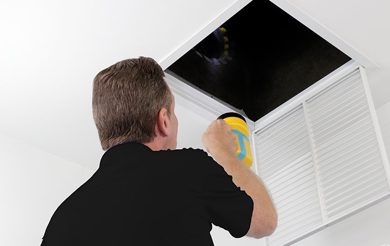 tech inspecting inside house