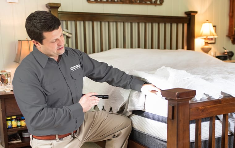 a technician inspecting a mattress for bed bugs in boca raton florida