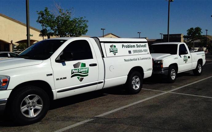 pest control trucks with logo