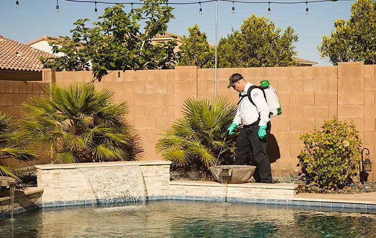 technician treating near swimming pool