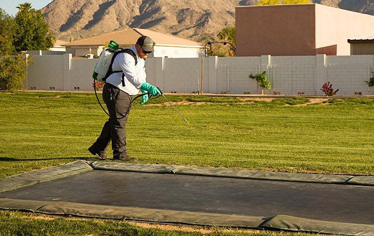 tech treating around a trampoline in rancho murieta california