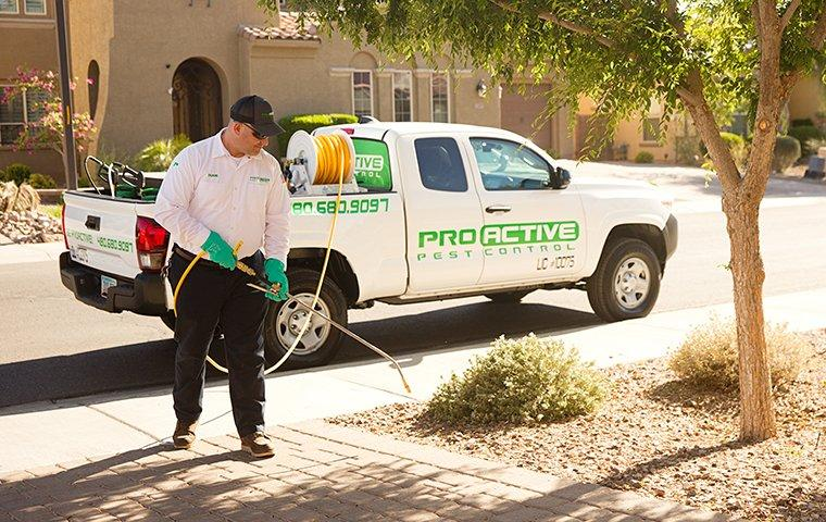 exterior treatment of home in san tan valley az