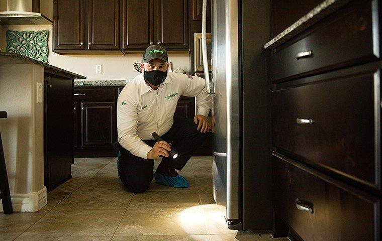 pest control inspection with service technician