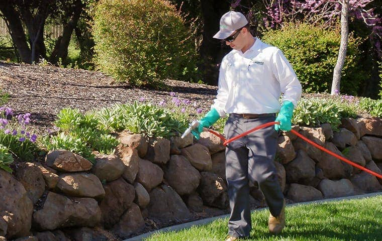 service technician treating a rock wall in sacramento california