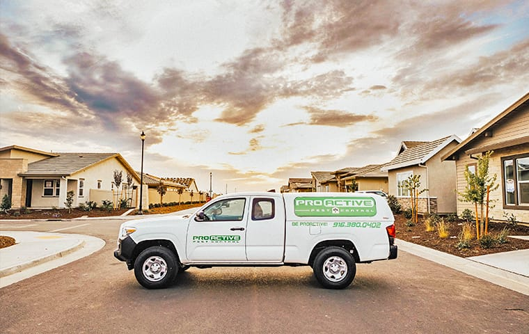 a service truck from pro active pest control in the street near homes in vacaville california