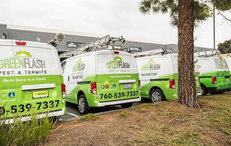 green flash company vans